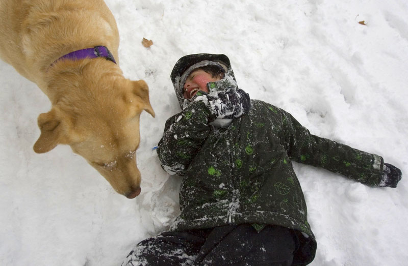 Alex Park, 5, of Salt Lake City plays with his yellow lab Lucy, 3, in the freshly fallen snow Friday, December 19, 2008 at Liberty Park in Salt Lake City. A strong snow storm dropped several inches of snow along the Wasatch Front and much of the state. Jim Urquhart/The Salt Lake Tribune; 12/19/08