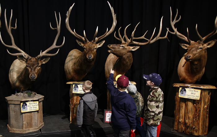 Gun and hunting enthusiasts boys look at mounted elk heads at the Western Hunting and Conservation Expo in Salt Lake CIty, Utah, February 23, 2013.  REUTERS/Jim Urquhart  (UNITED STATES)